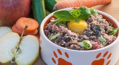 Wat zouden honden en katten moeten eten?