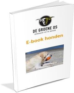 e-book honden