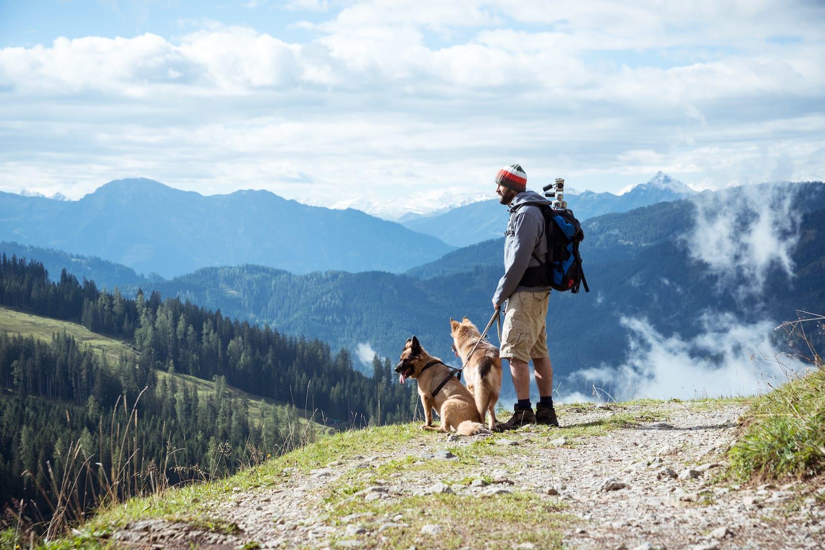 Top 6 tips voor een weerstandboost voor je hond
