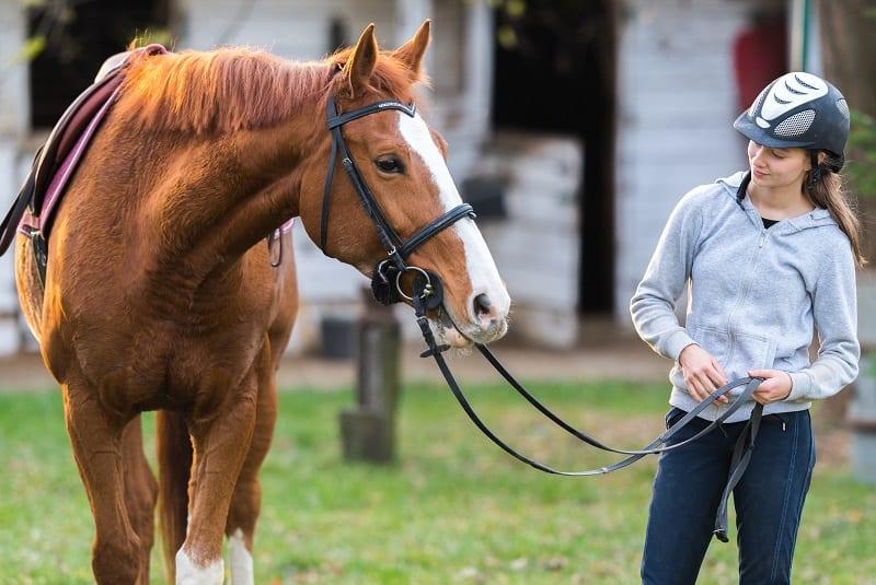 Burn-out en overtraining bij paarden: hoe te herkennen en te voorkomen