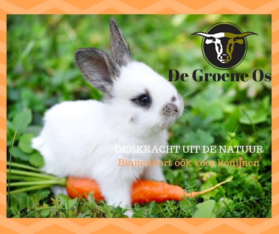 De Groene Os helpt je konijn natuurlijk gezond te blijven!