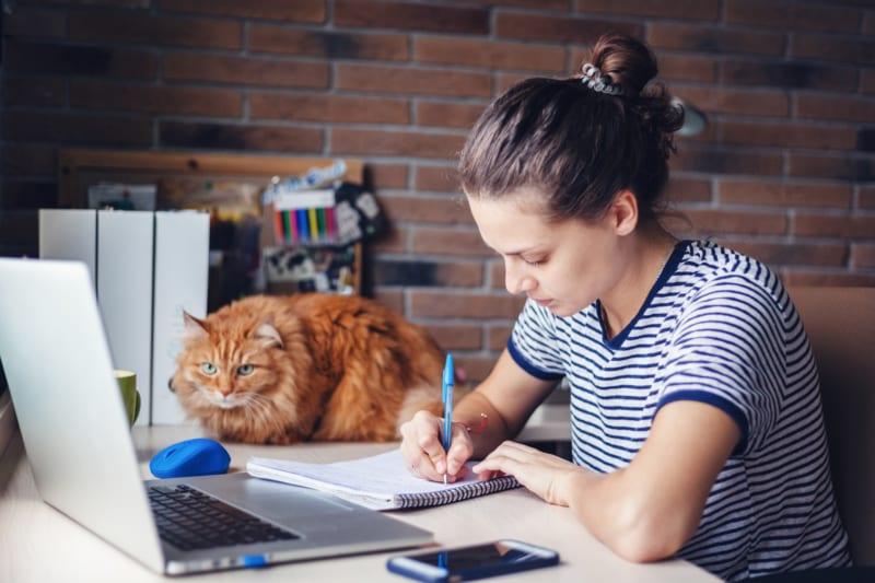 Gratis webinar voor diereigenaren: 'hoe houd ik mijn dier natuurlijk gezond?'