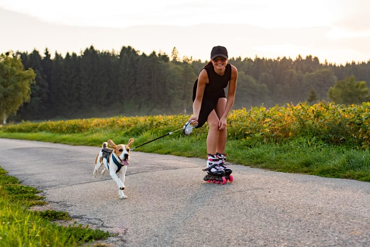 VLOG: actieve wandeling en sporten met je hond!